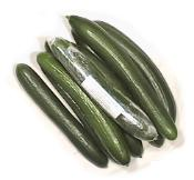 The tastiest of Gourmet European Cucumbers